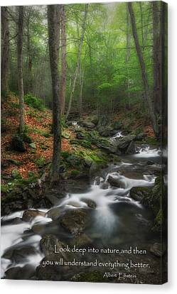 Look Deep Into Nature Canvas Print by Bill Wakeley