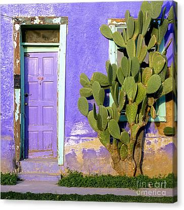 El Barrio Canvas Print by Timm Chapman