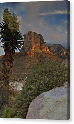 El Capitan At Sunrise Canvas Print by Stephen  Vecchiotti