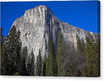 Yosemite Valley Canvas Print - El Capitan by Garry Gay