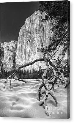 El Capitan I Canvas Print
