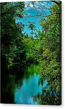 Canvas Print featuring the photograph El Dorado Park Lake View by Joseph Hollingsworth