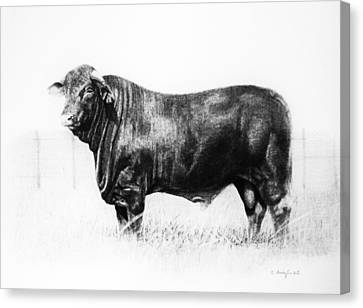 Canvas Print featuring the drawing El Santa Gertrudis by Noe Peralez