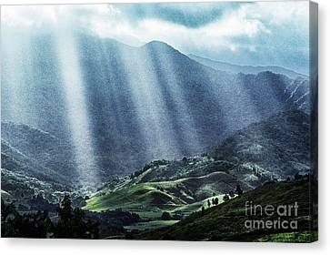 El Yunque And Sun Rays Canvas Print by Thomas R Fletcher