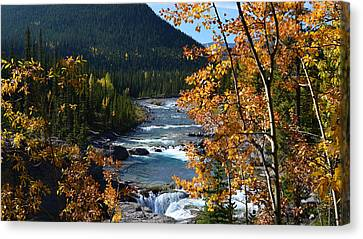 Elbow River View Canvas Print by Cheryl Miller
