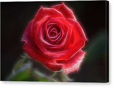 Electric Rose Canvas Print by Ronald T Williams