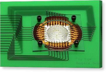 Electronic Compound Eye Camera Canvas Print by Professor John Rogers, University Of Illinois