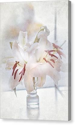 Elegance De Elegance Canvas Print by Jenny Rainbow