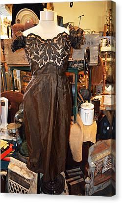 Elegance In Brown Canvas Print by Cindy Nunn