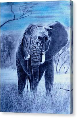 Elephant And Blue Sky Canvas Print
