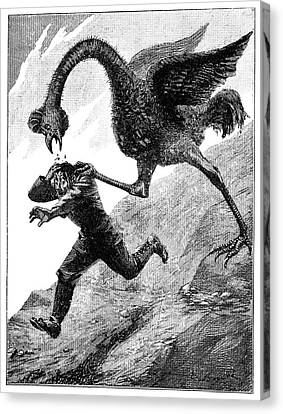 Elephant Bird Attack Canvas Print