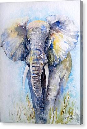 Elephant Blues Canvas Print