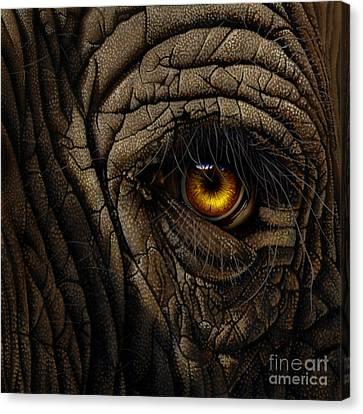 Elephant Eye Canvas Print by Jurek Zamoyski