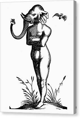 1616 Canvas Print - Elephant-headed Man, 1616 by Granger