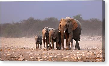 Elephants Canvas Print - Elephant Herd by Johan Swanepoel