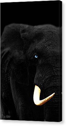 Elephant Canvas Print