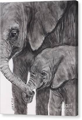 Elephant Love Canvas Print by Michelle Wolff