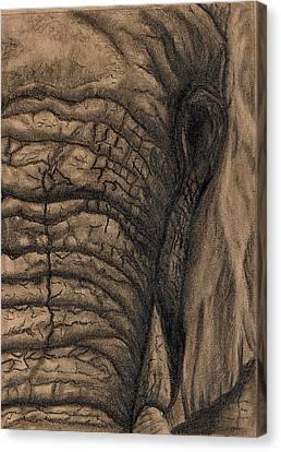 Elephant Memories Canvas Print by Tamyra Crossley