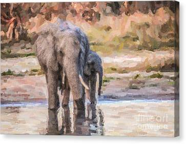 Elephant Mother And Calf Canvas Print by Liz Leyden