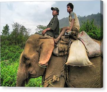 Two Wheeler Canvas Print - Elephant Rides by James Wheeler