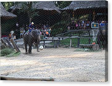 Elephant Show - Maesa Elephant Camp - Chiang Mai Thailand - 011330 Canvas Print
