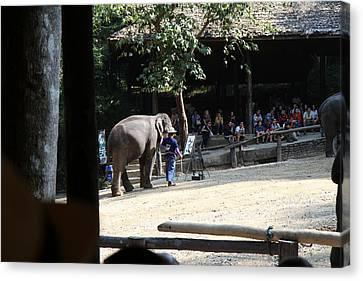 Elephant Show - Maesa Elephant Camp - Chiang Mai Thailand - 011342 Canvas Print by DC Photographer