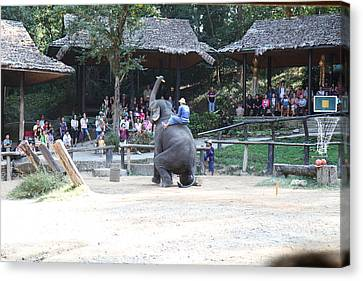 Elephant Show - Maesa Elephant Camp - Chiang Mai Thailand - 011353 Canvas Print