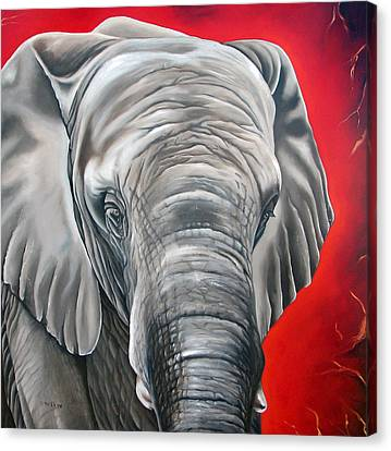 Elephants Canvas Print - Elephant Six Of Eight by Ilse Kleyn