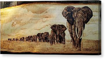 Elephants Are Contagious Canvas Print by Ciprian Macovei