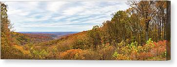 Indiana Landscapes Canvas Print - Elevated View Of Autumn Trees, Brown by Panoramic Images