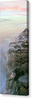 Roca Canvas Print - Elevated View Of Coast, Las Rocas by Panoramic Images