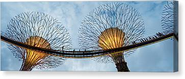 The Tiger Canvas Print - Elevated Walkway Among Supertrees by Panoramic Images
