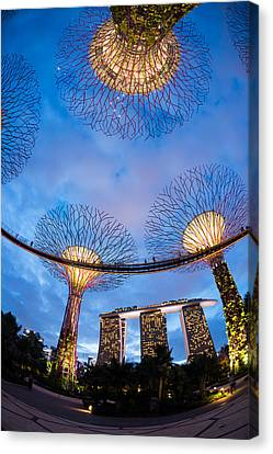 Elevated Walkway At Gardens By The Bay Canvas Print