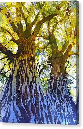 Cottonwood Canvas Print - Elizabeth's Canopy by Kris Parins