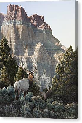 Elk At Cathedral Rock Canvas Print by Mike Stinnett