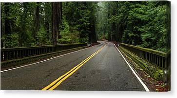 Giant Sequoia Canvas Print - Elk Creek Bridge On Avenue by Panoramic Images