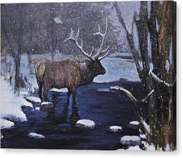 Elk In The Wilderness Canvas Print by Noe Peralez