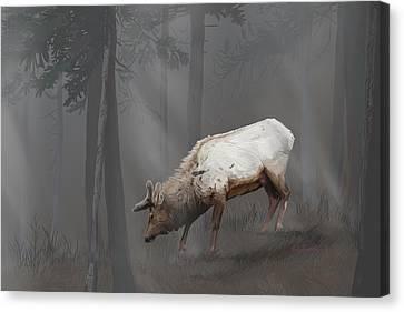 Elk In Velvet Fog Canvas Print