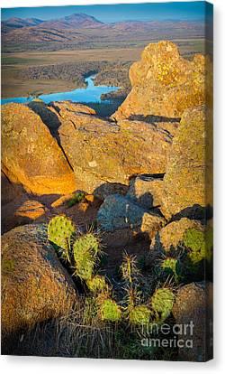 Elk Mountain Sunset Canvas Print by Inge Johnsson
