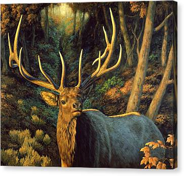 Elk Painting - Autumn Majesty Canvas Print by Crista Forest