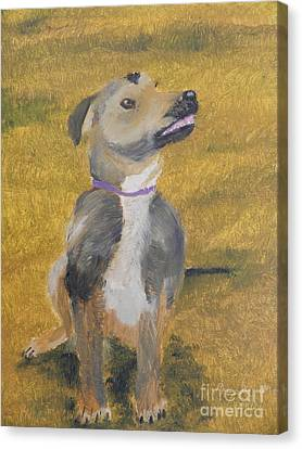 Canvas Print featuring the painting Ella by Pamela  Meredith