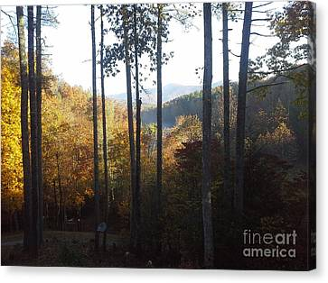 Canvas Print featuring the painting Ellijay Color by Jan Dappen