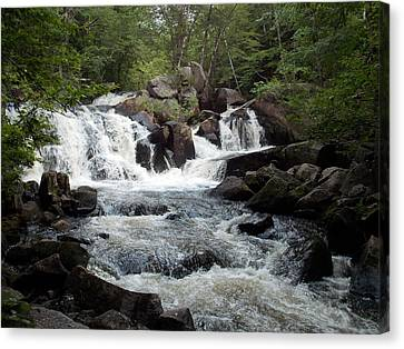 Ellis Falls In Maine Canvas Print by Catherine Gagne