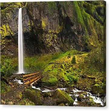 Green Lichen Canvas Print - Elowah Falls Panorama -  Columbia River Gorge In Oregon by Jamie Pham
