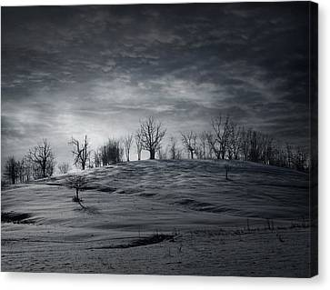 Elsewhere Canvas Print by Akos Kozari