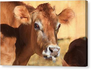 Cow Canvas Print - Elsie by Donna Kennedy