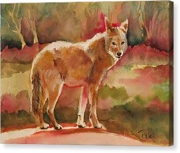 Elusive Visitor Canvas Print by Pattie Wall