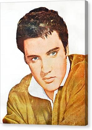Elvis Colored Portrait Canvas Print