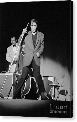 Elvis Presley And Bill Black Performing In 1956 Canvas Print by The Harrington Collection