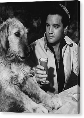 Elvis Presley Has A Milkshake With Dog Canvas Print by Retro Images Archive